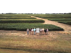MS Corn Promotion Board Centennial Rotation Study 2
